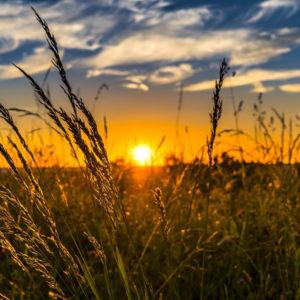 campagne coucher de soleil